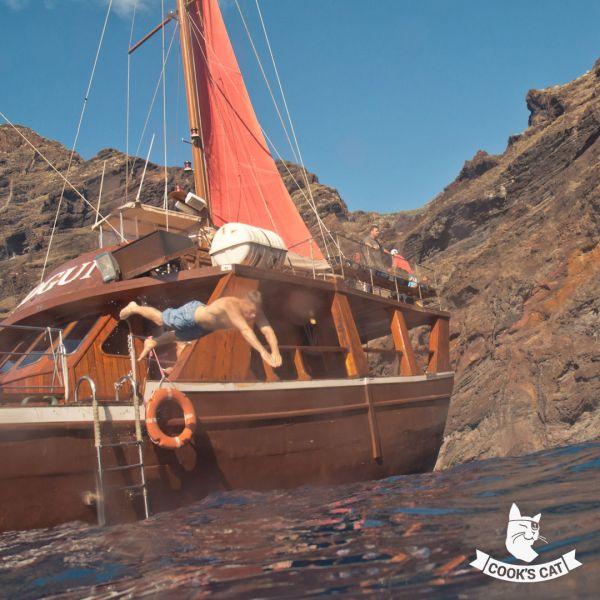 Bootsausflug mit der Shogun inklusive Badestopp zu den Delfinen von Los Gigantes
