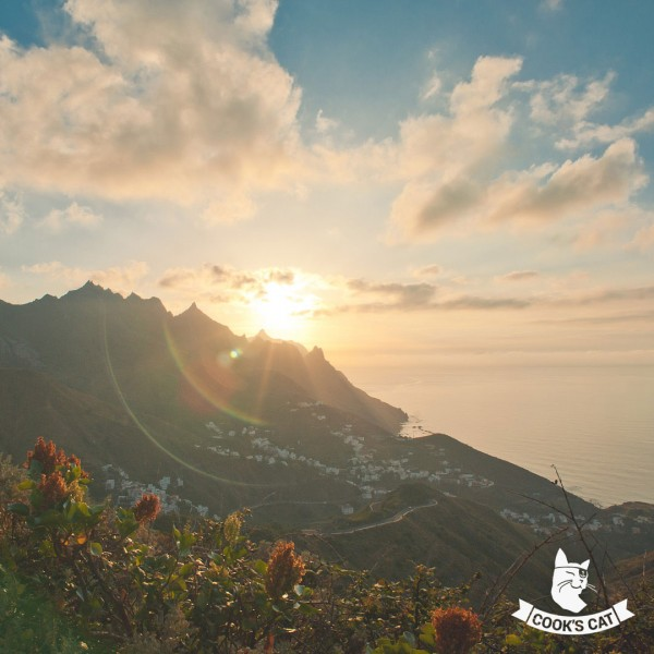 Cooks-Cat_Teneriffa-Ausfluege_Kanarische-Inseln_Teneriffa_Inselrundfahrten